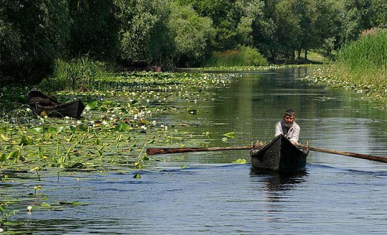 Delta Dunării a deschis lista Patrimoniului Mondial în România, în 1991