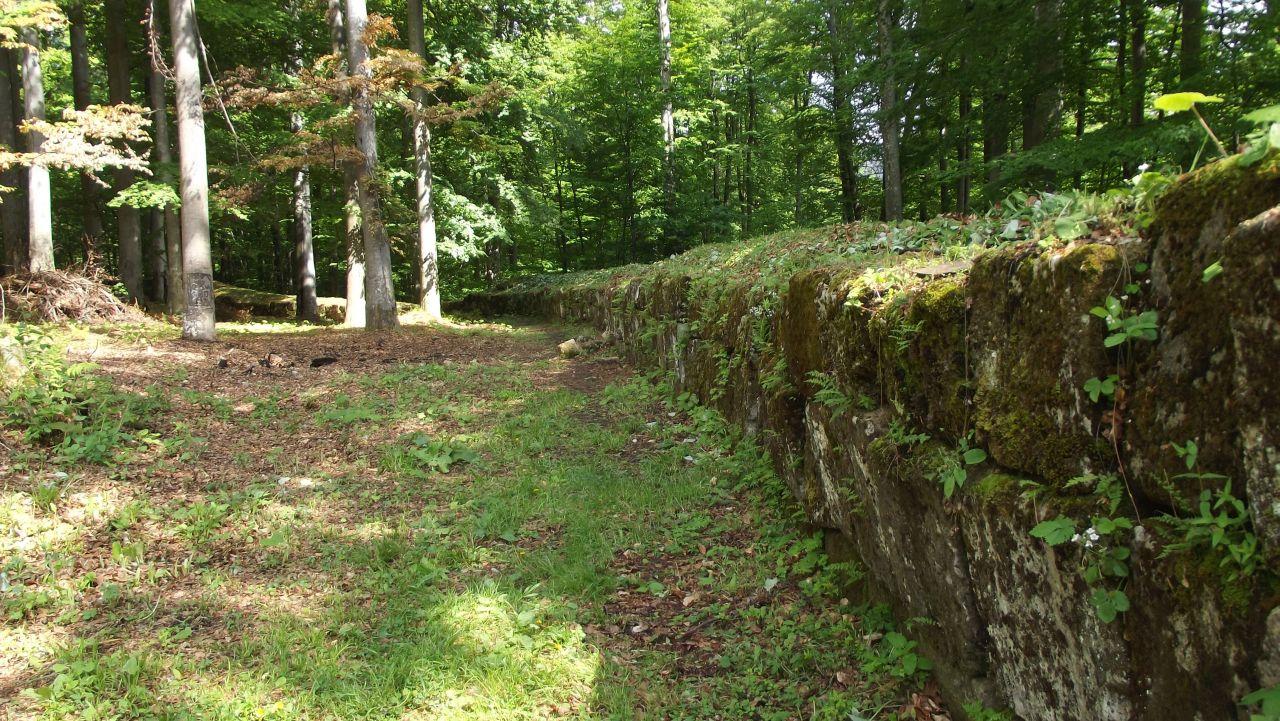 Zidul cetății