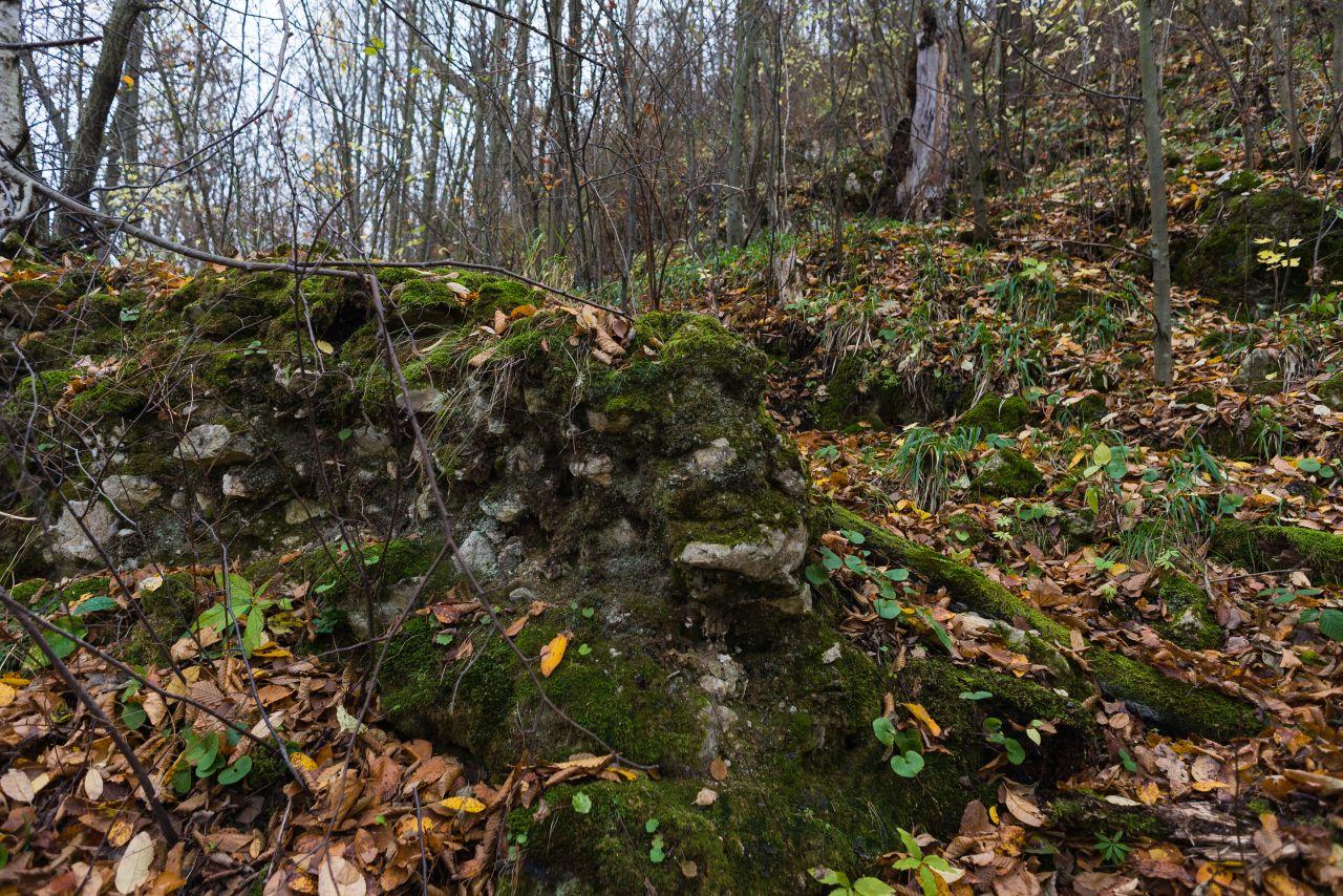 Urmele unui zid medieval
